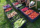 Las ferias de verduras suman un nuevo punto de venta
