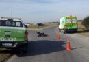 Una motocicista sufrió graves heridas tras un siniestro vial
